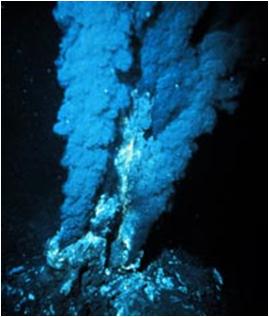 hypothermal-vents-closeups